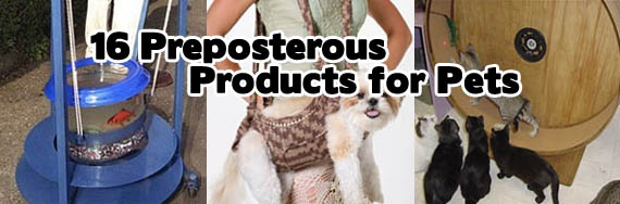 16 Preposterous Products for Pets