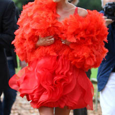 victoria beckham bird dress