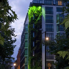 Living Wall at Athenaeum Hotel
