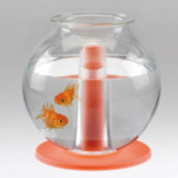 Bedside Lamp and Fishbowl by Matteo Cibic