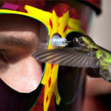 eYe2eYe Wearable Hummingbird Feeder