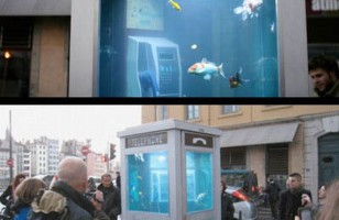The Phone Booth Aquarium: A Step Forward in Fish Equality