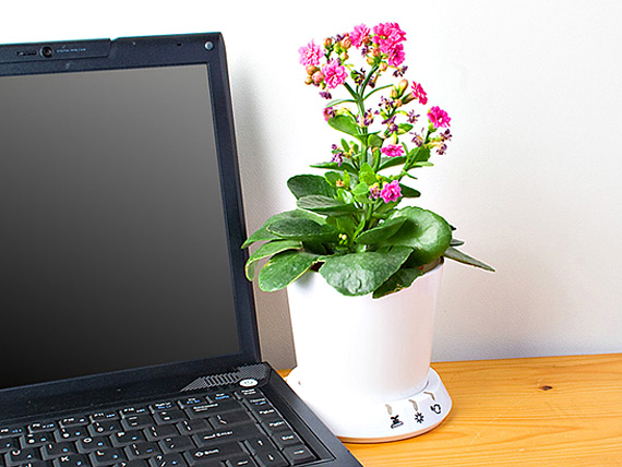 No Green Thumb Necessary When You Have the USB Flower Pot