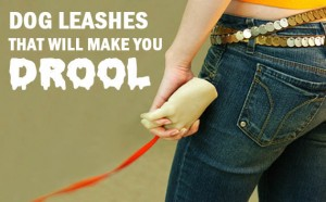 Dog Leashes That Will Make You Drool