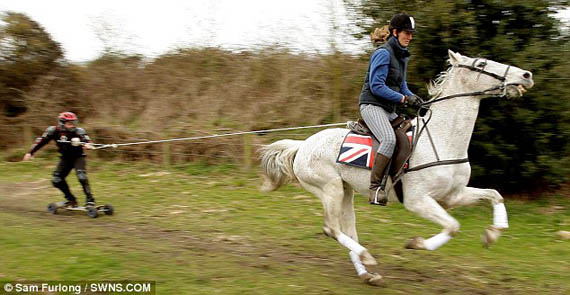 Horse Boarding: Not Just for Crazy Kids on a Farm Anymore