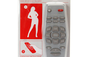 The Only Thing This Remote Controls Is How Fast She Dumps You