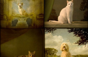 Pet Portrait Photos That Look Like 19th Century Paintings
