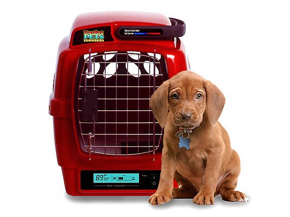 Spoil Your Pet With Climate Controlled Digs