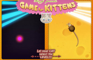 Don't Feel Like Playing With Your Cat? There's An App For That