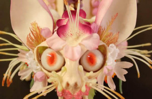 Creepy Flower Encrusted Skeletons Are Worse Than Taxidermy