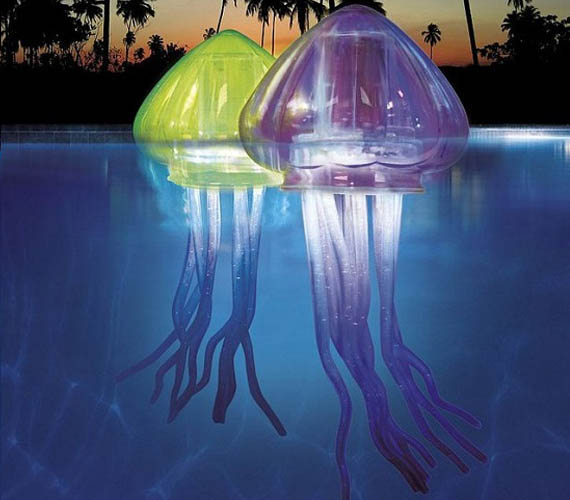 Jellyfish Probably Don't Get Invited To Many Pool Parties