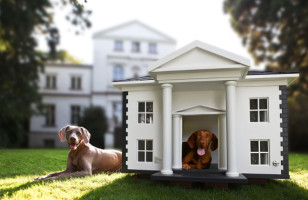 Doggone Fancy Dog Mansions