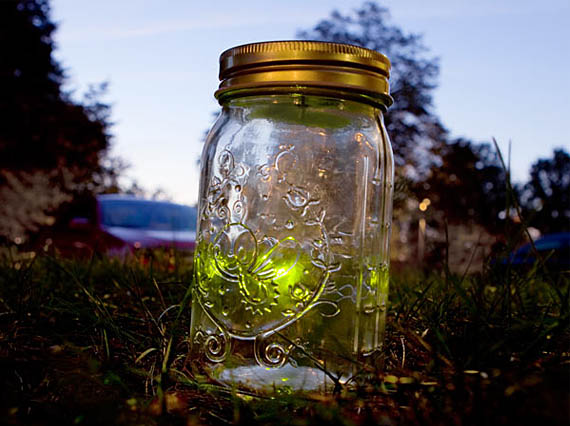 this firefly will last longer than a season on fox incredible things. Black Bedroom Furniture Sets. Home Design Ideas