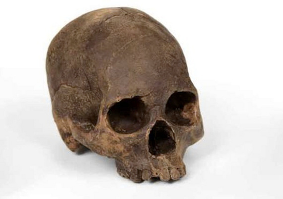 Chocolate Skulls Cast From Real Human Skull