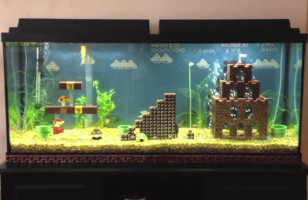 Aquarium With LEGO Super Mario Level