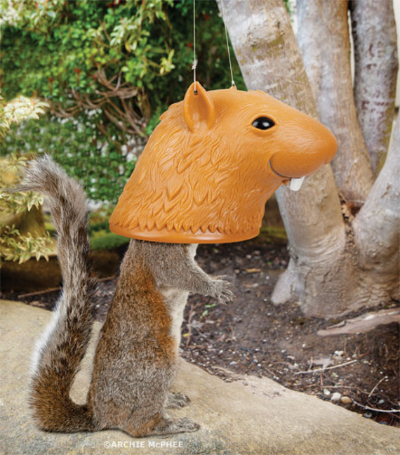 For Squirrelwatchers: Big Head Squirrel Feeder