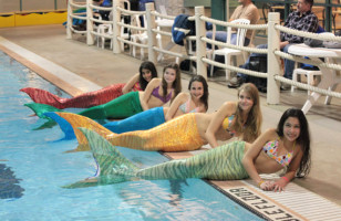 Mermaid Tails You Can Actually Swim In