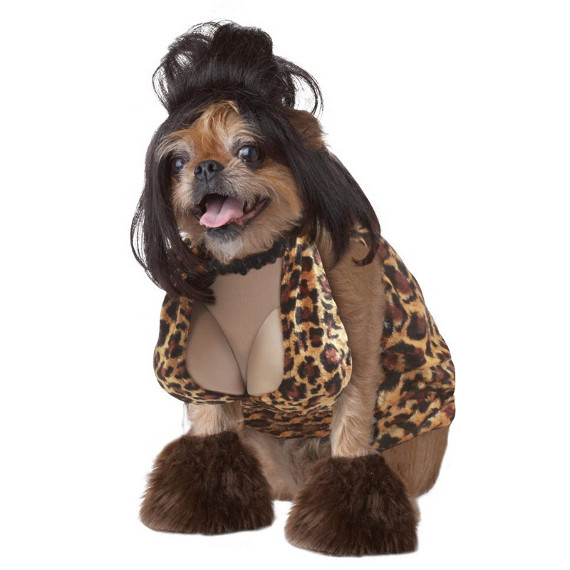 Slutty Halloween Costumes For Your Dog!