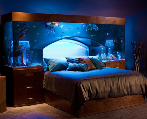 Sleep With The Fishes In An Aquarium Bed