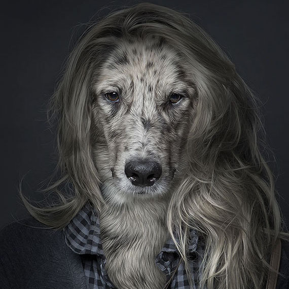 Photos Of Dogs Who Look Like People