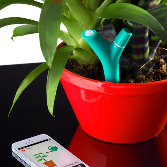 Doodad Reminds You To Water Your Plants