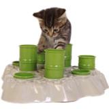 Cat Feeding Game