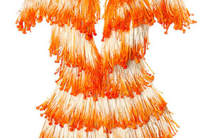 Beautiful Dresses Made From Food