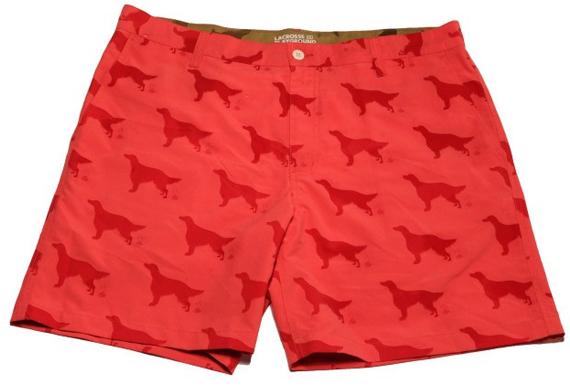 Get Shorts Wet, See Spot Poop