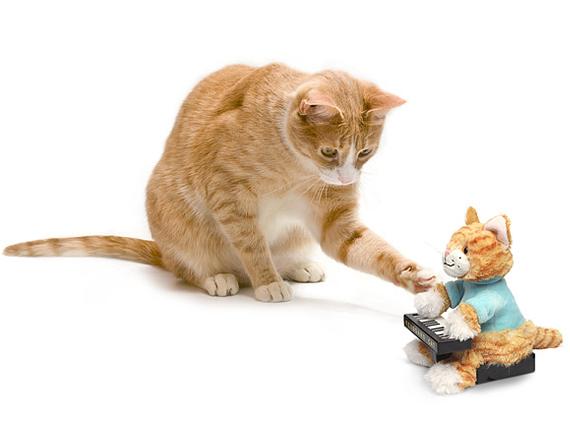 Play Him Off, Animatronic Keyboard Cat Plush Toy!
