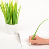 Blades of Grass Pens
