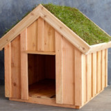 Living Roof Dog House