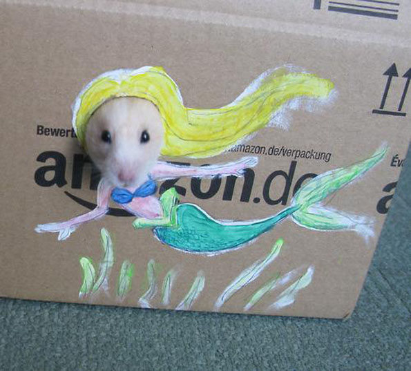 Hamster Cardboard Cutouts