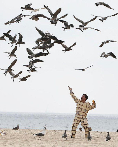 Caption This: Birds & Bread (Win Stuff)