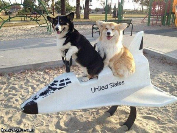 Caption This: Rocket Dogs [Closed]