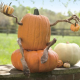 Poseable Pumpkin Arms & Legs