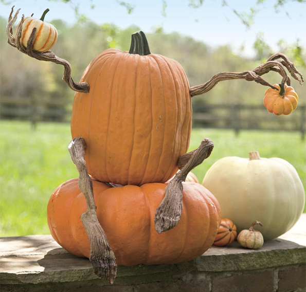 You Need Poseable Pumpkin Arms & Legs