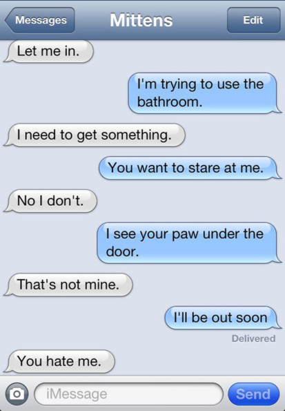 Texts From Your Cat