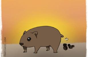 6 Weird Animal Facts