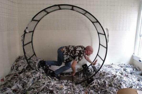 Human Sized Hamster Wheel!!!