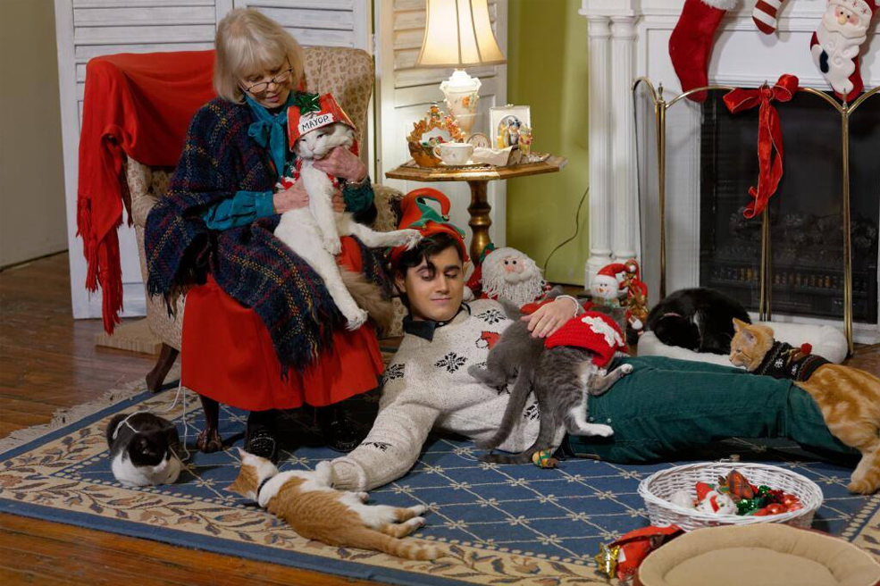 This Crazy Cat Lady and Drunk Elf Want You to Adopt Cats
