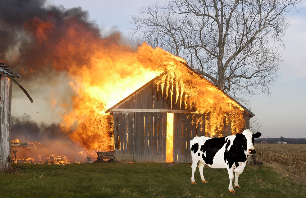 review barn burning 1 barn burning by william faulkner the store in which the justice of the peace's court was sitting smelled of cheese the boy, crouched on his nail keg at the back of the crowded room, knew he smelled cheese, and more: from where he sat he.