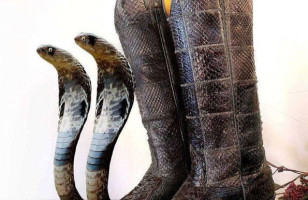 The Ssslickest Snake Cowboy Boots