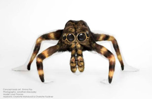 Body Painted Contortionists Are The Ultimate Eye Trickery