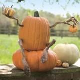 Pumpkin Appendages