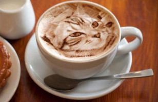 NOT Photoshop: Insanely Impressive Cat Latte Art