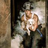 Firemen + Puppies Calendar