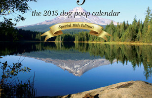 A Dog Poop Calendar Exists For Reasons I Can't Explain