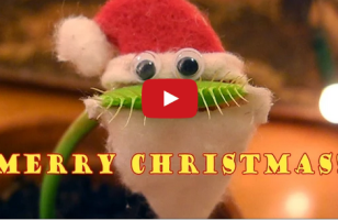 Just A Venus Flytrap Dressed As Santa And I Can't Even