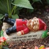 Star Trek Garden Gnomes