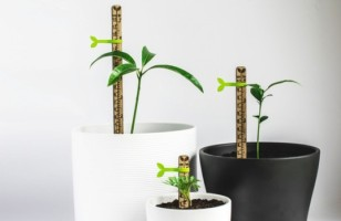 Picky Is A Teeny Tiny Measuring Stick For Tracking Plants' Growth